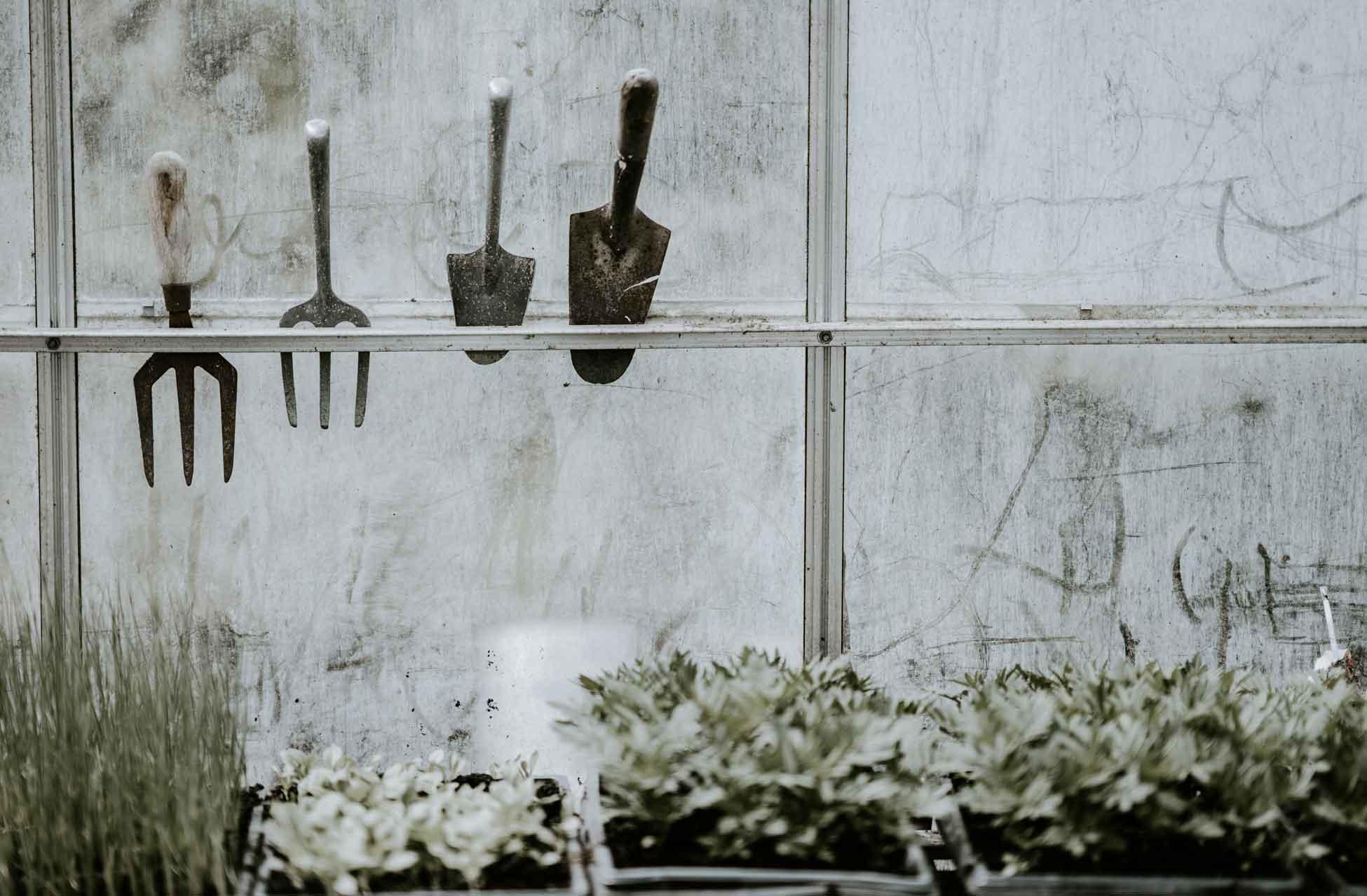 Gartengeräte aufgehängt im Gewächshaus